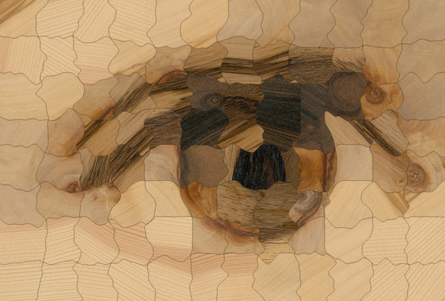 Computational Parquetry: Fabricated Style Transfer with Wood Pixels
